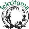 Fekritama-logo