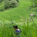 Thailande voyage solidaire Tamadi