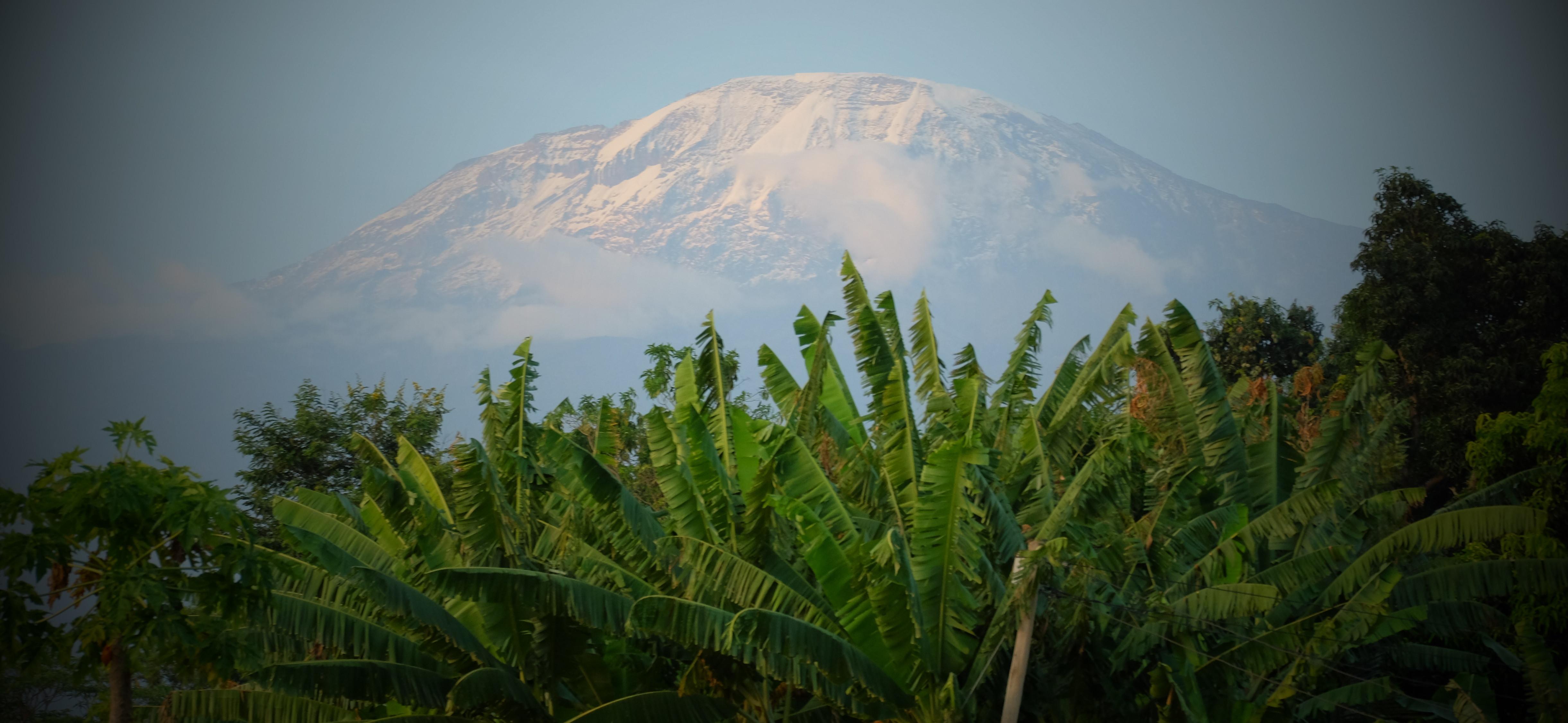 Kilimanjaro-e1433661643227