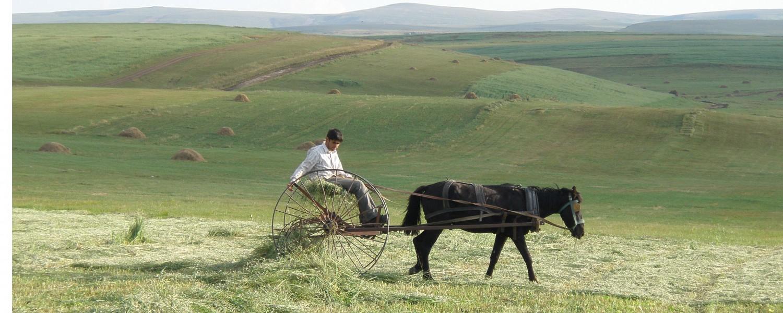 voyage solidaire turquie caucase anatolie